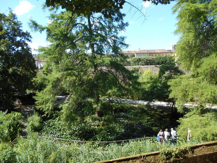 orto botanico-lucca-souvenirdiviaggio