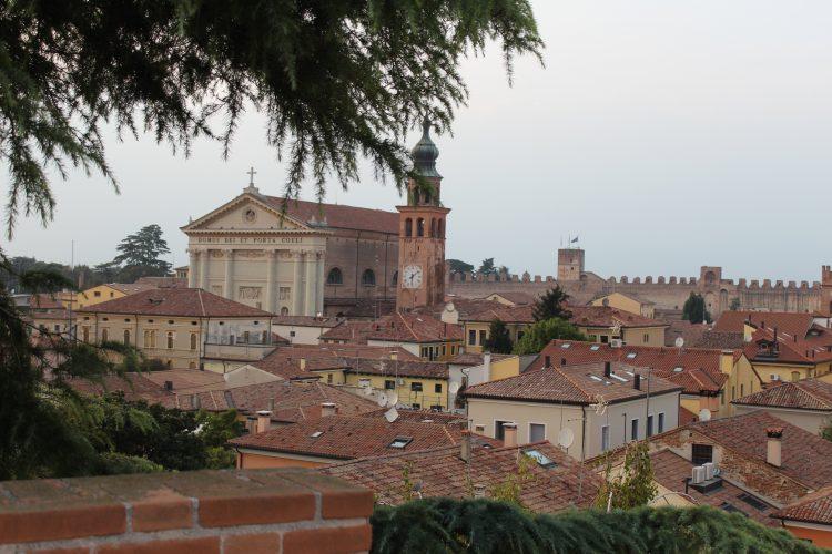 Duomo di cittadella (2)