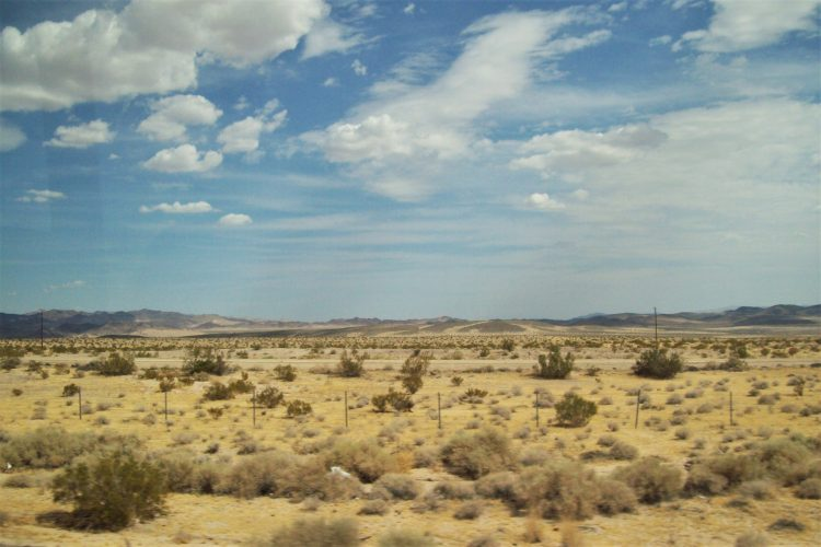 deserto del mojave-california