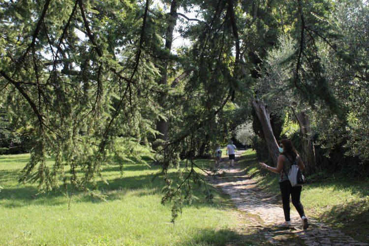 sentieri e parco isola del garda